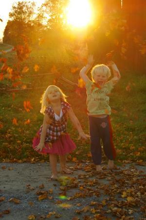 Bästa kompisarna Isabella och Alvin leker med höstlöven i solens sista strålar den 30 september 2011.