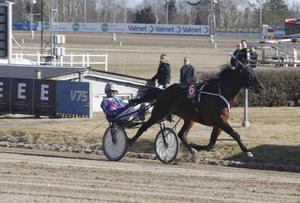 Money Never Sleeps vann med Erik Lindegren i sulkyn.