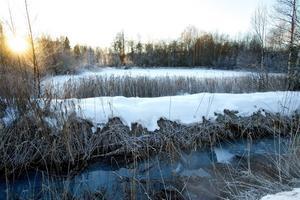 Giftslammet, Jox-havet vid pappersbruket i Grycksbo kommer inte längre att bli tillgängliigt då vägen dit grävs av.