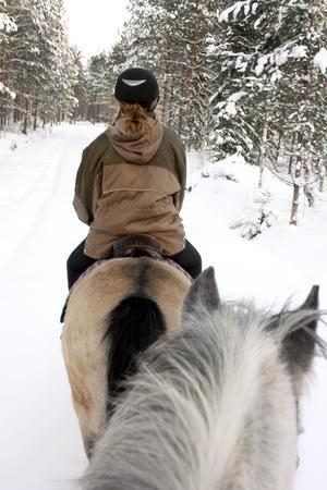 Tystnad. Skogen vilar under snötäcket, tystnaden bryts endast av vårt småprat och hästarnas frustningar.