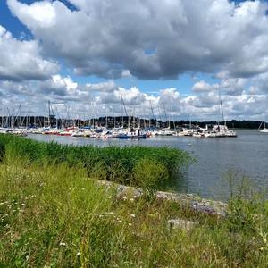 Fina moln ser fotografen Sif Waldegård Rosling från Kärleksudden.