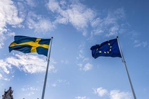 Svenska flaggan och EU-flaggan. Foto: Lars Pehrson / SvD / TT.