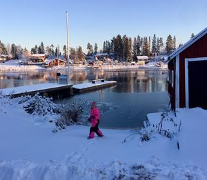 Skatan. Bild: Barbro Persson