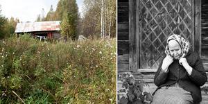 Johanna Syréns bilder från förfallna lador och människor som inte längre kan leva at det jorden ger, kontrasteras i utställningen Växlingar av Hilding Mickelssons porträtt av ett levande jordbrukslandskap.