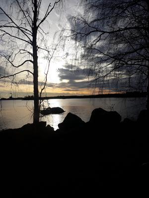 En bild från lotsen i Ljusne med utsikt över Vallvik och havet. Foto: Jan Siljeroth