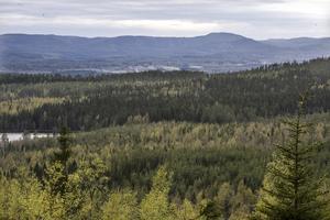 Utsikt från Gruvberget,  längst bort i dalen skymtar byn Bricka.