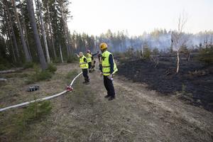Mellan 20 och 25 personer från Räddningstjänsten jobbade med att släcka skogsbranden.