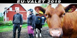 Framtiden för EU:s jordbrukspolitik är på väg att avgöras.