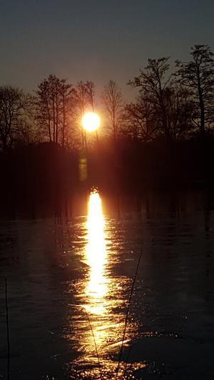 Söndageftermiddag den 19 januari vid Ekebydammar. Solen blänkte på vattnet. Så tog kort mot solen och detta blev resultatet. Foto: IngMarie Ekman