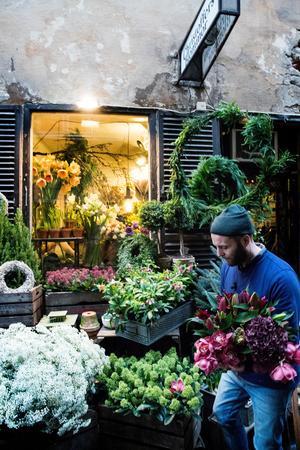 Det är tidig morgon och Gamla Stan i Stockholm håller på att bli grönare.
