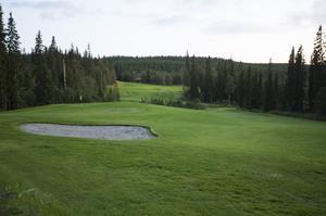 """Varje sommar håller familjen Olofsson ett släktmästerskap på golfbanan i Kälapannsjön: """"De finns de som är bättre än mig"""" säger Dan Olofsson som har 27 i handicap."""