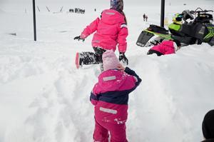 Får några räckte det med en snöhög för att roa sig.