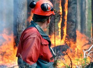 Länsstyrelsen genomför under måndagen en naturvårdsbränning vid Stormyran-Lommyrans naturreservat i Ånge kommun.