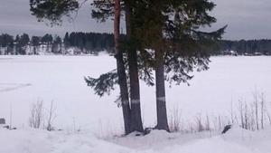 Här från stranden ska kniven ha kastats i Vattudalen, enligt uppgifter som kommit från i förhör. Men när polisen hade dykare som letade på sjöbotten hittades inget stickvapen. Bild från polisens brottsutredning.