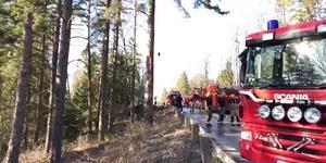 Gräsbranden vid Talbystrand spred sig till två sommarstugor