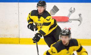 Joel Werner, VIK Hockey.