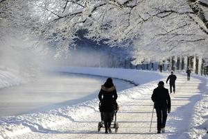 Det kan bli ner mot 15 grader kallt natten mot tisdagen i de inre delarna av Västernorrland, enligt Forecas senaste prognos.