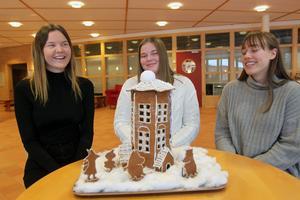 Anna Granberg, Alma Larsson och Miriam Hellberg har tillsammans med sex skolkompisar skapat ett muminhus.