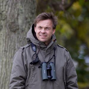 Niklas Aronsson är redaktör för Birdlife Sveriges medlemstidning Vår Fågelvärd.
