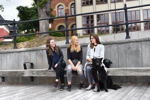 Egen sommar-företagaren Tora Holmström omgiven av sina ledare Josefine Halleström (t.v) och Ebba Gunarsson (t.h)  och Ebbas hund Java.