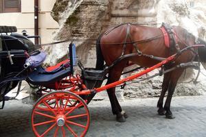 Skribenten har varit på besök i Rom där hästarna har en plastsäck hängandes baktill. Bild: Privat