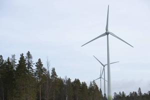 Vindkraftpark med flera vindkraftverk på Granberget söder om Umeå.