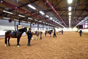 I dag har klubben nära 200 elever, 14 hästar och drygt 300 medlemmar.
