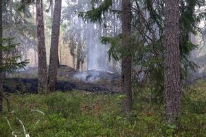 Skogsbrand öster om Surahamma.