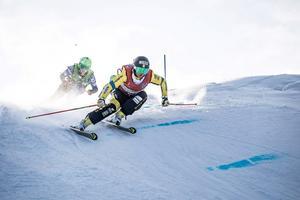 Alexandra Edebo har haft en stark säsong i skicrossbanorna, med tolv segrar. Foto: Kevin T McHugh