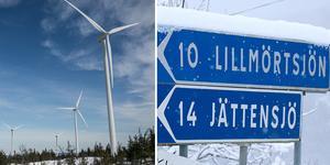 Bygg- och miljönämnden vill stryka ett antal av de vindkraftverk som ryms inom Storåsens vindkraftpark. Det framgår av ett yttrande till Länsstyrelsens miljöprövningsdelegation.