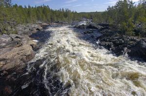 På en 200 meter lång sträcka är fallhöjden vid Hylströmmen 23 meter. Bilden tagen från hängbron.
