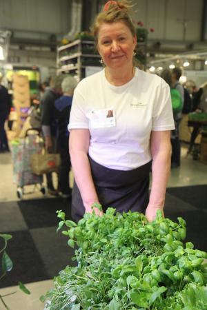 Odling på små ytor kan komma i många skepnader. Här visar Lena Ljungquist, vd på Enhörnaföretaget Wexthuset, en lösning för köket: En rullande vagn med plats för alla hemmets örter. Det finns även en överbyggnad med växtbelysning för årets mörkare månader.