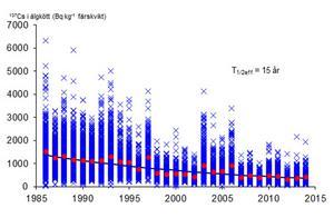 Utvecklingen av cesium-137 i älgar skjutna i Gävle mellan åren 1986 och 2013.