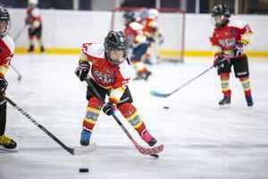 Hockeyungdomar från Kina tränar i Sverige under en vec