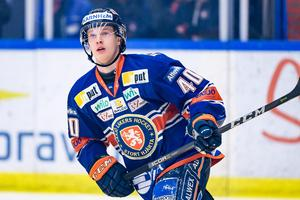 Bild: Jonas Ljungdahl/Bildbyrån