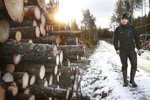 Medlemmarna i Mellanskog är många, men ambitionen är att alla ska hinna få hjälp att få skogen röjd till sommaren. – Jag har pratat med väldigt, väldigt många, men jag har inte hunnit svara alla ännu, säger Tom Olsson, skogsinspektör på Mellanskog.
