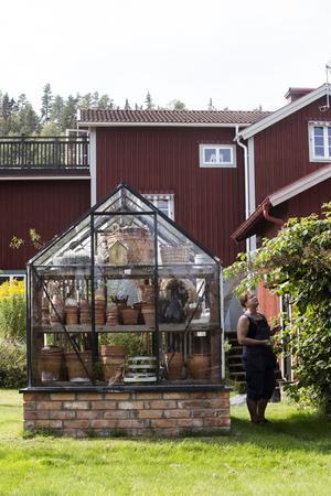 I trädgården på framsidan av huset finns växthuset och en generös björnbärsbuske.