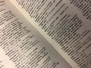 Ludvika ska få ett eget lexikon.