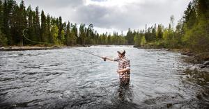 Så här vill Vänsterpartiet se Långan. Ett fritt brusade eldorado för fiskare och andra naturintresserade.  Foto: Robert Henriksson