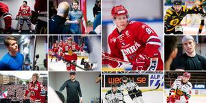 Elva nya spelare har anslutit till Timrå IK inför nästa säsong. Bilder: Bildbyrån och ST arkiv.