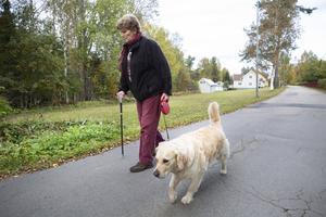 Varje dag promenerar Annika Östberg med sina hundar i Bergvik.