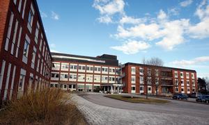 Maritta Selin påpekar att många behandlades vid dagrehab på Lindgården.