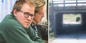 Den 4 januari 2019 dömdes Johan Fallqvist, 28, till livstids fängelse för mord och grov våldtäkt.