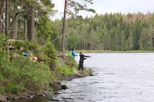 Stora Tolsjöns regnbågsforeller var inte extra generösa med att hugga när Vattnans fiskeklubb arrangerade tjejfiske för första gången.