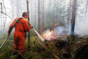 Släckningsarbete i Sala under den stora skogsbranden sommaren 2014.  Foto: Fredrik Persson / TT