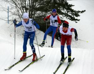Årets Tour de Fyrfasen kördes på fina spår i Hede, Vemdalen, Åsarna och Ytterhogdal.