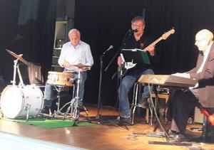 När väl Gösta Svenssons trio tagit sig upp på scenen var det fullt ös som gällde. Det uppskattade publiken. Foto: Helena Jonsson