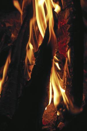 Schönheit greps i Hamburg och dömdes till straffarbete. Innan han senare avrättades blev han tvungen att se sina böcker brinna upp.