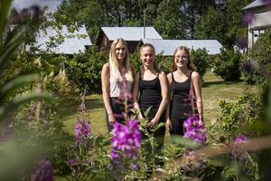 Elin Sundin, Mathilda Sundin och Johanna Johansson, som varit engagerade  i forskningsprojektet.