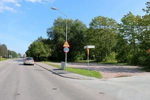 Grönt i dag, men när Sjöborgs fastigheter inleder bygget av 49 hyresrätter under hösten kommer en del av träden försvinna.